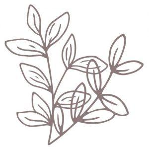 logo gentilezza sostenibile